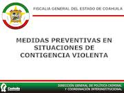 Documento PDF medidas contingencia violenta