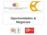 Documento PDF 35 1 oportunidades y negocios