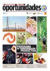 Documento PDF periodico oportunidades