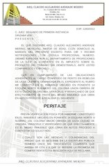 Documento PDF exp judicial 1243 12