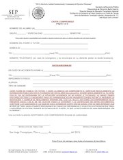 Documento PDF carta compromiso