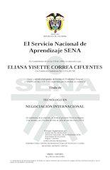 Documento PDF diploma