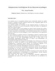 Documento PDF adaptaciones morfologicas de los tiburones al pielagos
