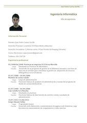 Documento PDF curriculum vitae modelo1 verde