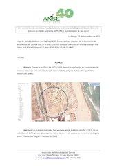 Documento PDF echinophora