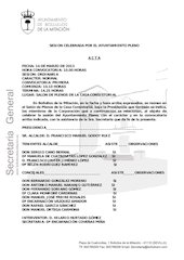 Documento PDF acta plenaria marzo 2013