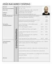 Documento PDF curriculo jes s navarro 2014