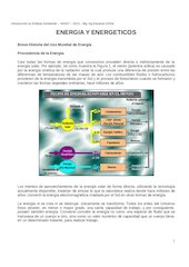 Documento PDF energia y energeticos
