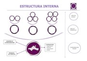 Documento PDF cercles comarcals