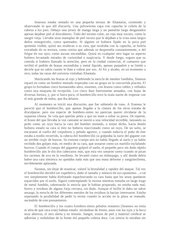 Documento PDF seannus