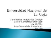 Documento PDF presentacion seminario sociedades irregulares