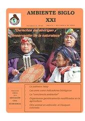 Documento PDF revista ambiente siglo xxi n 26