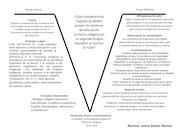 Documento PDF v de gowin competencias linguisticas