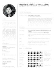Documento PDF curriculum vitae