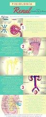 Documento PDF fisiologia renal