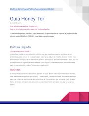 Documento PDF guia honey tek 12 db