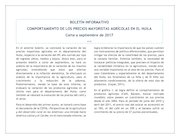 Documento PDF boletin mayorista vi