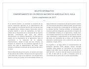 Documento PDF boletin mayorista vi