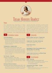 Documento PDF 171023 cv thilmanavarroramirez