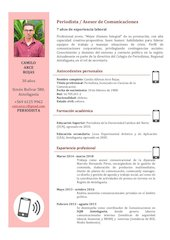 Documento PDF curriculum camilo arce 2