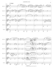 5 - Ammerland - Jacob de Haan - Set of Clarinets.pdf - página 5/12