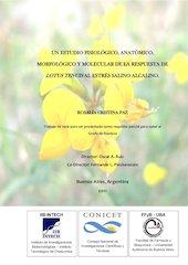 Documento PDF paz rosalia   tesis doctoral