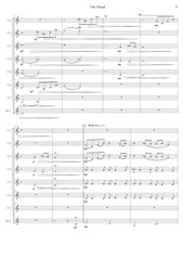 48 - The Flood - Mario Burki - Set of Clarinets.pdf - página 4/52
